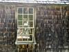Ce que les fenêtres voient / What windows can see (deplour) Tags: fenêtres reflets reflections windows mur wall bardeaux cèdre cedar shingles tavillons