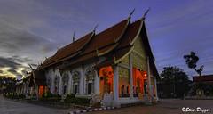 0S1A4796enthuse (Steve Daggar) Tags: chiangmai thailand travel buddhist monk markets street candid asia