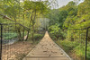 Steele Creek Swinging Bridge 2017 02 HDR (Jim Dollar) Tags: annespringsclosegreenway bridges swingingbridge hdr jimdollar canon5div