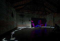 20170908-DSC06457_DxO (Reinhard Voelkel) Tags: labiennale venice venezia italy art kunst biennale biennaledivenezia damienhirst palazzograssi