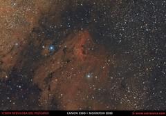 Nebulosa del Pelícano IC5070 (Astrocava) Tags: ic5070 ngc6997 pelícano pelican nebula nebulosa nebulosity nebulosidad cosmos deep space cieloprofundo dso espacio universe universo astrophotography astrofotografía astro astronomy astronomía astrometrydotnet:id=nova2232139 astrometrydotnet:status=solved