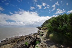 Charente Maritime (Isabelle Odent) Tags: nouvelleaquitaine charentemaritime île aix ponant côte sauvage roche