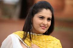 Indian Actress Ramya Hot Sexy Images Set-1 (17)