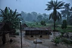 When it rains it really rains!