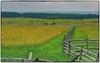 Gettysburg Battlefield (Steve4343) Tags: nikon d70s gettysburg national battlefield park green fence line yellow post steve4343