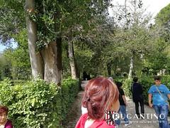 gita_viterbo_palazzo_farnese_2017_associazione_rugantino_199