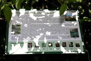Tree and Shrub Garden