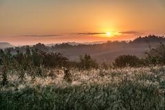 Zonsopkomst (aj.lindeboom) Tags: mist zonsopkomst sunrise landschappen