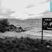 Playa Centro - Lago Nahuel Huapi, San Carlos de Bariloche (provincia de Río Negro / Argentina)