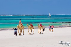 Beach caravan