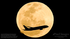 Jetstar VH-VKF Boeing 787-8 c/n 36231-175 Crosses the September 2017 Full Moon (ePixel Images) Tags: jetstar vhvkf boeing boeing7878 dreamliner fullmoon cornmoon brisbane denpasar flight jetstaraustralia jetstarairways airbus boeing787 airbusa320 septemberfullmoon lunar canoneosc200 cinemarawlight uhdvideo occultation silhouette astrophotography interstellar cosmos universe cosmology aircraft aviation aviationphotography planespotting airline sky night moon transit moontransit astronomy travel flymetothemoon canon canonglobal