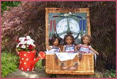 Picknick mit den Minis ... (Kindergartenkinder) Tags: dolls himstedt annette park blume garten kindergartenkinder essen grugapark personen picknick blumen reki leleti sommer