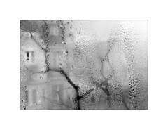 Paris. 2009 (José Luis Cosme Giral) Tags: paris2009 moments windows winter raindrops tree