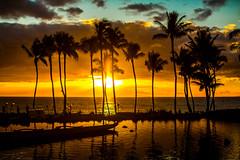 When Your Love is Not Around When the Sun Goes Down (Thomas Hawk) Tags: grandwailea hawaii maui wailea waldorfastoria waldorfastoriagrandwailea beach clouds humuhumu humuhumunukunukuapuaa palmtree restaurant sunset tree fav10 fav25 fav50 fav100