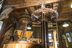 Op de voorgrond de koningsspil met het spoorwiel. (Eduard van Bergen) Tags: holland niederlande netherlands dutch nederland water alblasserwaard molenwaard liesveld liesvelt still picture photo foto photograph path fields trees wetering outdoor landscape grass field grassland farm lifestock wife apron living life working serene sky meadows light ancient old vintage farms land polder sheep lush veld weide weiland luft clouds ooievaarsdorp streekcentrum storks storche pentax k5 nursery stork laantje tree shed abandoned alt oud groot ammers molen mill miller moulin mühle steenrondsel koningsspil spoorwiel
