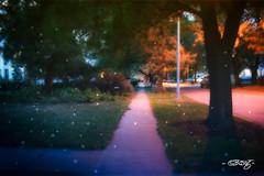 Summer Night (dougkuony) Tags: benson neighborhood evening sidewalk streetlight summer hdr