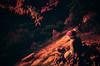 Stone Buddha at sunset (koribrus) Tags: koribrus nikonfe film photography nikon lens filmisnotdead korean korea kori focus color 35mm prime colour manual redscale 2017 ais ai brus fe believeinfilm nikkor may analog kodak filmphotography manualfocus daewonsa boseong temple buddhist buddhism buddha statue toque red forest trees sunset coin meditation contemplation religion spiritual spirituality