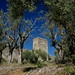 A September day in Monteriggioni