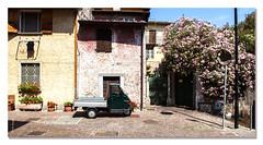 Piaggio - TKF (Ton Kuyper Fotografie) Tags: italie italy iseomeer lakeiseo monteisola piaggio bloemen straat streetview sensole road building