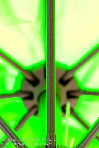 Green Umbrella Structure