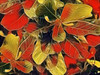 September - time of a new season (♣Cleide@.♣ mostly off) Tags: © ♣cleide♣ brazil 2017 ps6 photo art digital texture nature foliages season artdigital exotic netartii atree sotn