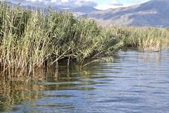 Lake Prespa (Teresa's Place/) Tags: teresacoelho macedoniagreece makedonia timeless macedonian macédoine mazedonien μακεδονια