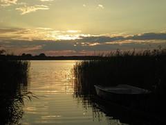 Sunrise by the lake (doubleshotblog) Tags: poland nikon light coolpix summer sunrise lake