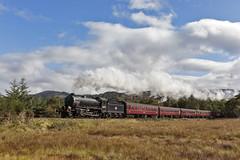 On the marshland (EltonRoad) Tags: 62005 k1 steam train railway line jacobite westhighlandline westcoast westhighlands scotland fortwilliam mallaig