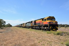 BRM002, C510, 4904, 48s35, RL302 & RL305 (rob3802) Tags: 48class 48s35 4843 49class 4904 brmclass brm002 rlclass rl302 rl305 ssr southernshorthaulrailroad moree nsw locomotive loco graintrain wheattrain railway rail garah