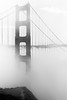 *** (Misha Sokolnikov) Tags: sanfrancisco sf ca california goldengate goldengatebridge fog bridge noiretblanc blackandwhite leica leicamonochrom mishasokolnikov 50mm aposummicron monochrome leicamsystem