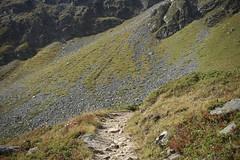 montée à la cabane de Becs de Bosson (bulbocode909) Tags: valais suisse grimentz valdanniviers montagnes nature sentiers vert cabanedesbecsdebosson