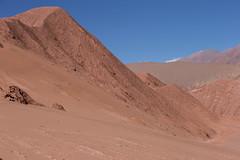 El Arenal, Tolar Grande (zidamdam) Tags: argentina salta argentine elarenal tolargrande