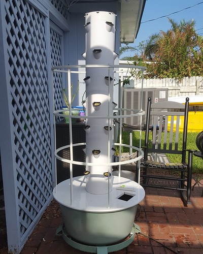 Irma killed my Tower Garden, so we cleaned it all up and started over.