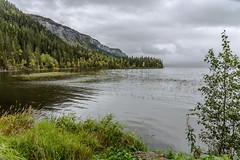Langvannet (Einar Schioth) Tags: langvannet water trees tree day grass grassland sky autumm autummcolors canon clouds cloud coast shore vividstriking nationalgeographic ngc norway norge nature nordland mountain landscape lake photo picture outdoor einarschioth