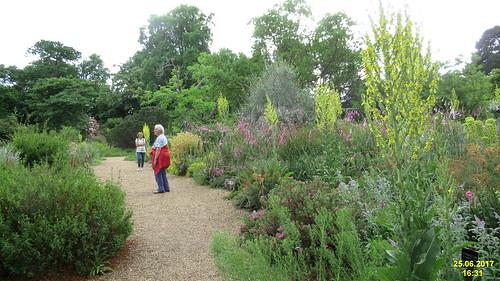 The Dry Garden, Savill Garden