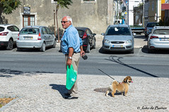 """Where is my dog?"" - ""Where is my master?"" (JOAO DE BARROS) Tags: joão barros people dog animal street"
