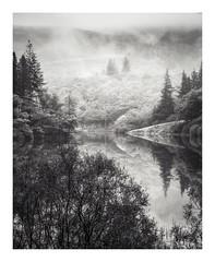 Loch Ard (Dylan Nardini) Tags: autumn 2017 nikon lochard cloud mist rain water fog trossachs d810 scotland wet