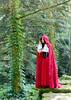 77 (1 van 1) (neroke53) Tags: elfia arcen2017 nederland elfen steampunk castle fujifilmxt1 little red riding hood littleredridinghood