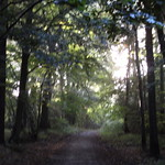 The Vyne National Trust 10-09-2017 thumbnail