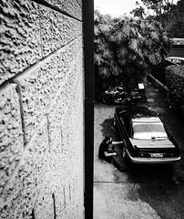 A man and his other half (doubleshotblog) Tags: doubleshot halves half splitimage carlovers toyota muse man passion car carpassion bw iphoneography doubleshotblog myman sydney australia portrait