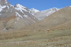 IMG_0650 (y.awanohara) Tags: kailash kora kailashkora ngari tibet may2017 yawanohara