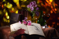 The Miracle of Poems (d heinz) Tags: helios402 bokeh lightpainting still life books wine bücher poem gedicht butterfly schmetterling helios buch book swirl rose wein
