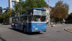 Tram Museum Zürich - Tag der historischen Busse - FBW Hochlenker  (20. August 2017) (hrs51) Tags: stoll hans rudolf fbw hochlenker wetzikon club switzerland zürich tram museum trammuseum zurich bus historical 239 hochlenkerbus
