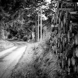 A walk down the lane at