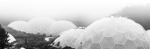 Biomes in the Mist