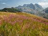 2017-08-10-27_Peaks_of_the_Balkans-272 (Engarrista.com) Tags: alpsdinàrics balcans montenegro peaksofthebalkans plav vusanje caminada caminades picbor trekking