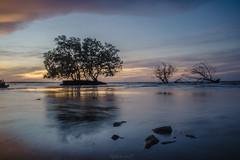 A memorable morning (Flutechill) Tags: sunset nature sea beach dusk landscape water sky reflection scenics outdoors tree tranquilscene coastline cloudsky beautyinnature summer blue sun seascape