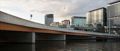 melbourne-9238-ps-w (pw-pix) Tags: river ripples patterns bridge sign bird gull seagull oldportarea olddockarea yarrariver northbank buildings offices apartments northwharf glass steel concrete clouds sky blue grey black white silvery orange city curve curved texture commonwealthbank medibank amp charlesgrimesbridge southwharf southbank melbourne victoria australia