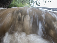 UW110082.jpg (jramspott) Tags: georgia storm river nature water chattahoochee atlanta rain tropicalstorm irma unitedstates us