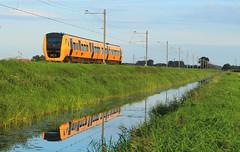 NSR 3433 @ Zwolle (Sekdoorn) (Sicco Dierdorp) Tags: ns nsr reizigers buffel dm90 zwolle wierden almelo marslanden laagzuthem heino polder sekdoorn